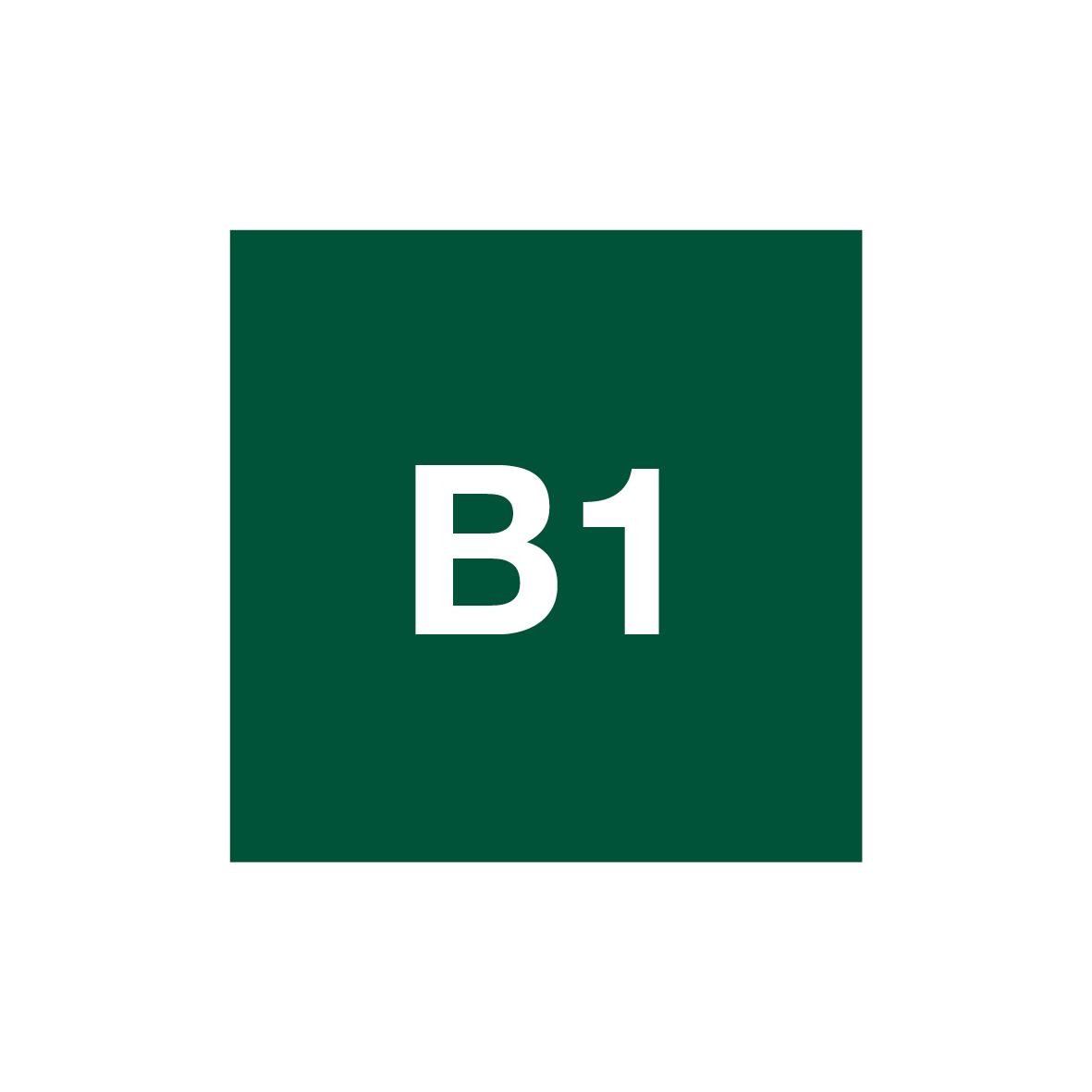 04790022-NIVEL INTERMEDIO B1